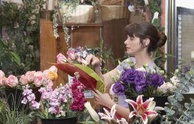 Blomsterdekoratør velger ut blomster