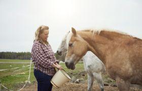Hestefaglært forer hest ute på paddock.