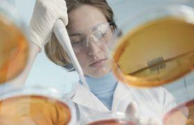 Mikrobiolog i laboratoriet
