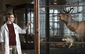 Museumsformidler forteller om utstilling