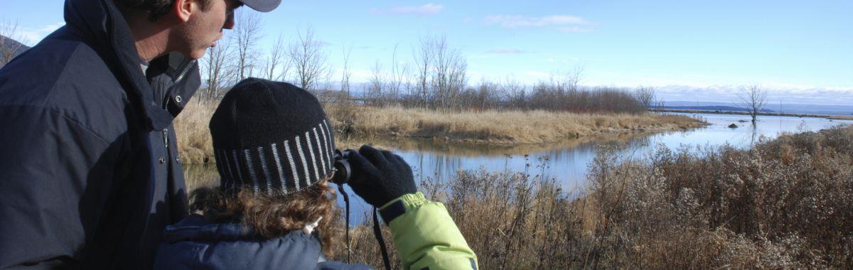 Ornitologer ute i naturen