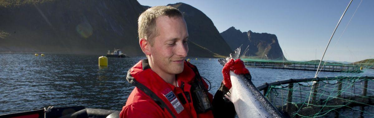 Fiskeoppdretter som holder opp en fisk han har henta opp fra merden bak.