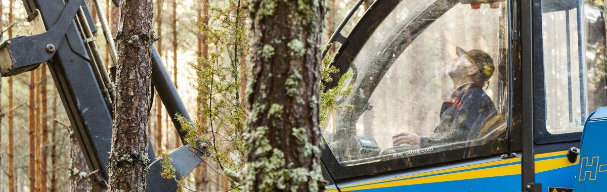 Skogsoperatør sitter i skogsmaskin
