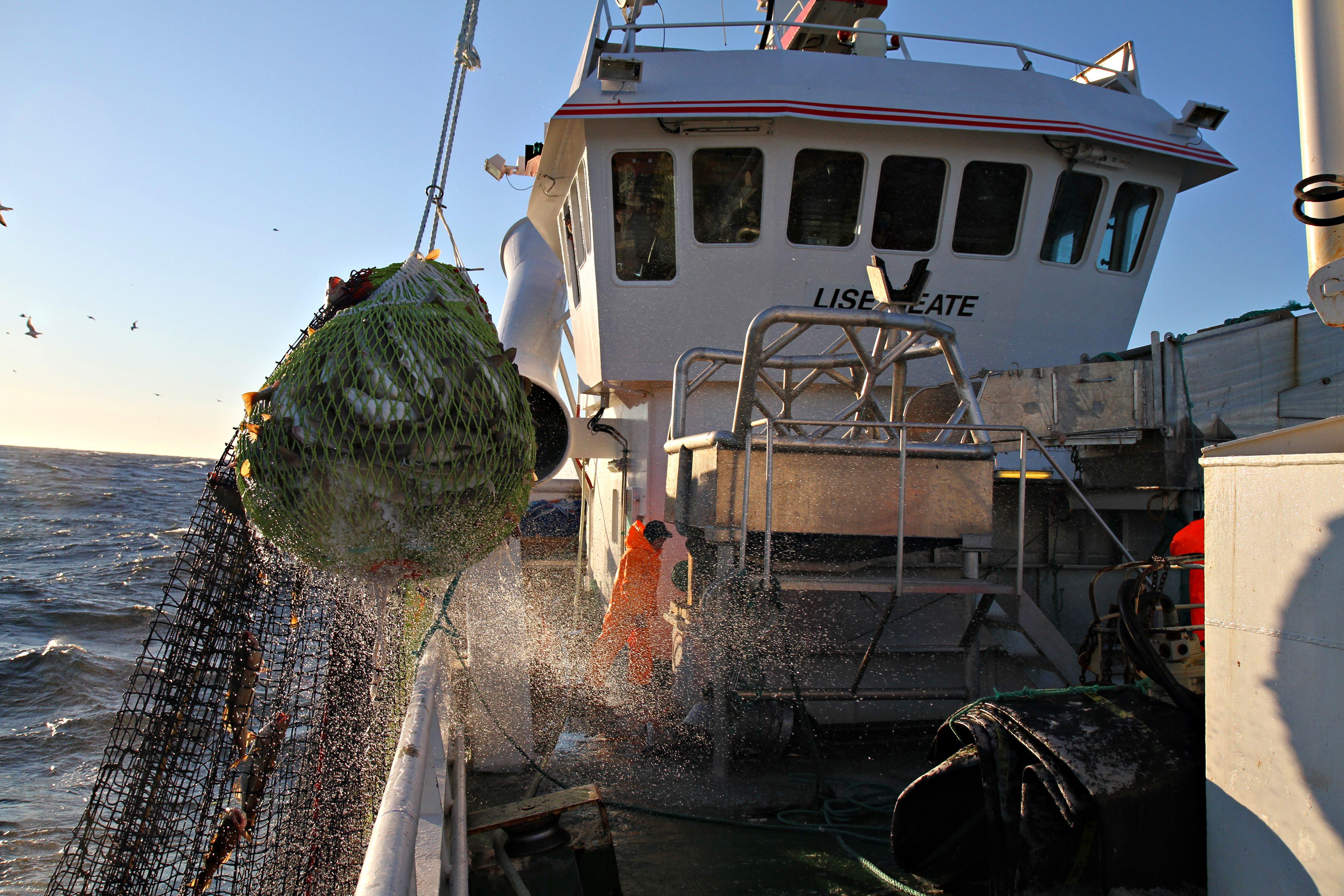 jobb på fiskebåt